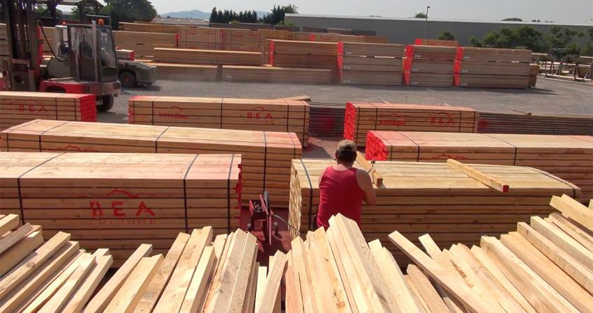 sawn timber in every standard dimension